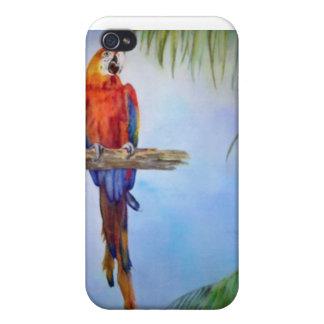 Pintura tropical del tema de la playa del pájaro d iPhone 4 cárcasa
