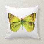 Pintura viva de la mariposa de la acuarela almohada
