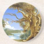 Pinturas 1 de la naturaleza posavasos personalizados