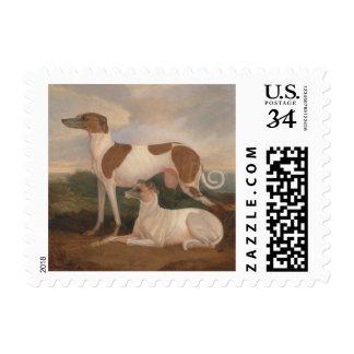 pinturas al óleo de galgos sello