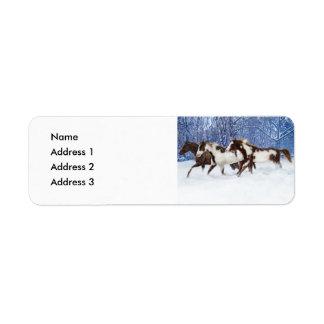 Pinturas en el invierno, dirección 3, dirección 2, etiquetas de remite
