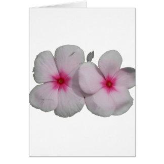 Pinwheel flower pink with natural marks card