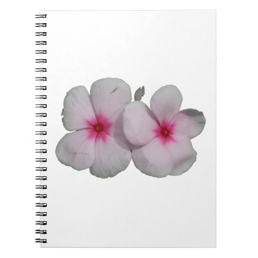 Pinwheel flower pink with natural marks note book