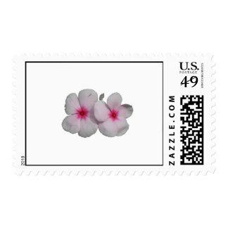 Pinwheel flower pink with natural marks postage stamp