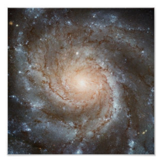 Pinwheel galaxy Hubble Telescope Outer Space Photo Poster