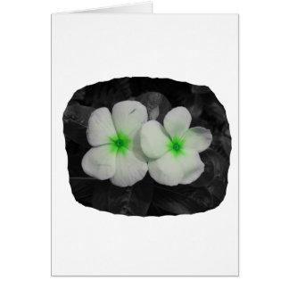 Pinwheel green circle  flower cutout card