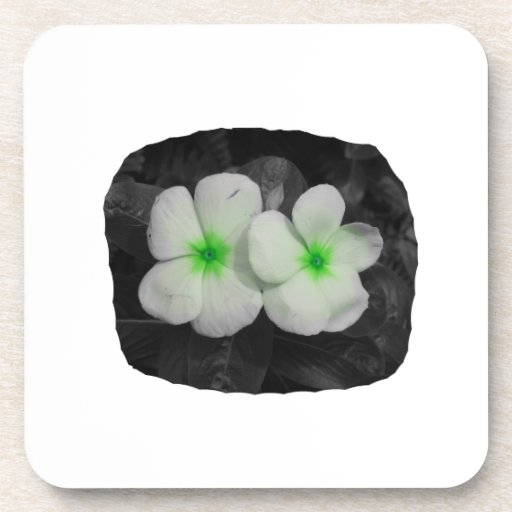 Pinwheel green circle  flower cutout coaster