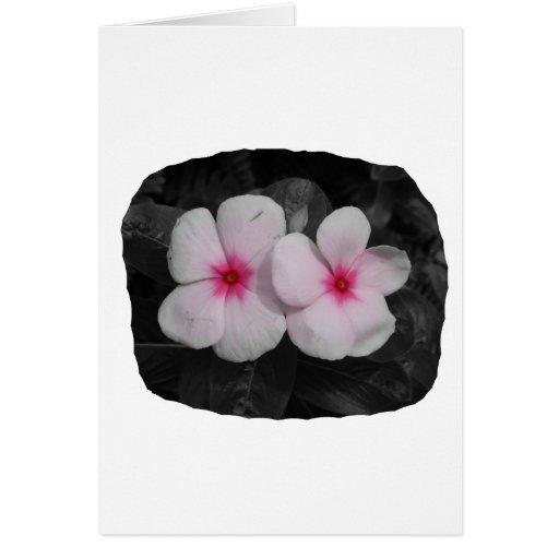 Pinwheel pink circle  flower cutout stationery note card