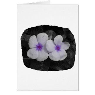 Pinwheel purple circle  flower cutout greeting cards