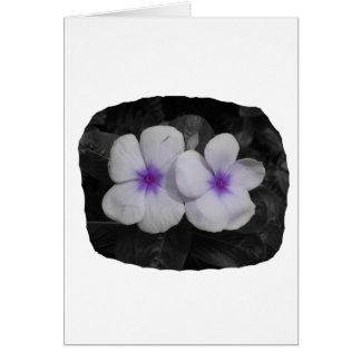 Pinwheel purple circle  flower cutout card