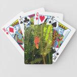 Pinza de langosta hawaiana del estilo de las baraja cartas de poker