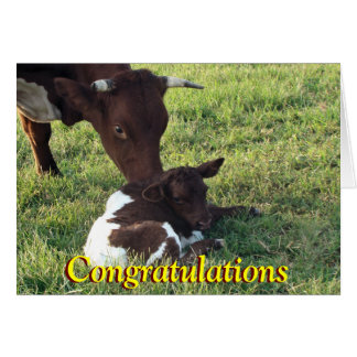 Pinzgauer cow&calf-customize any occasion greeting card