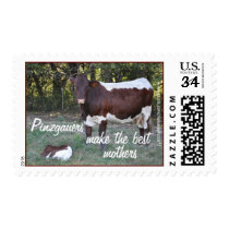Pinzgauer Cow & Calf Stamp- personalize Postage