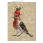 Pinzón de casa en tarjeta de las plumas