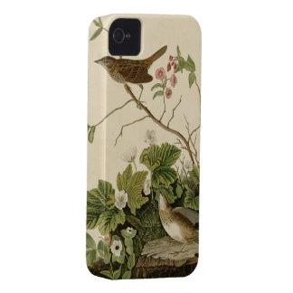 Pinzón de Lincoln iPhone 4 Case-Mate Protector