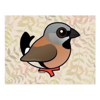 Pinzón Negro-throated de Birdorable Postal