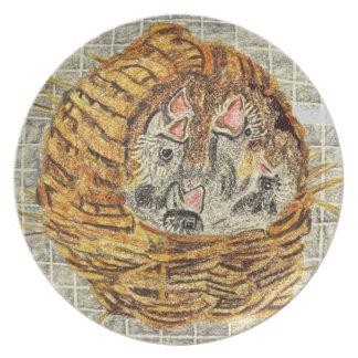 Pinzones de cebra del bebé en jerarquía platos