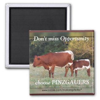 PinzOpt-imán-personalizar