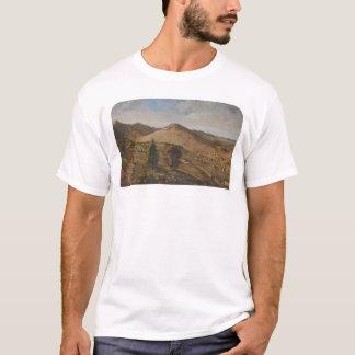 Pioche, Lincoln County, Nevada (1186) T-Shirt