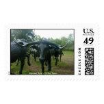 Pioneer Park - Dallas, Texas Postage Stamp