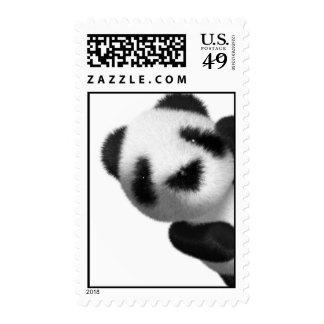 píos de la panda del bebé 3d sello postal