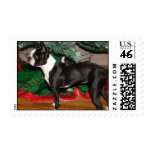 Piper Christmas Stamp