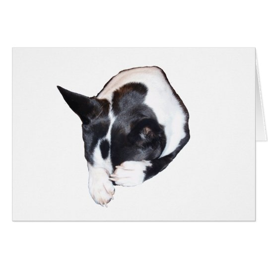 Piper - Sleeping Card