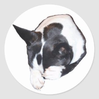 Piper - Sleeping Classic Round Sticker