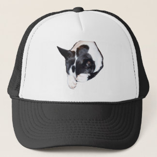 Piper - Sleeping Trucker Hat