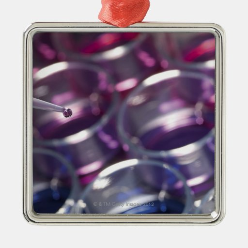 Pipeta y placas de Petri con los líquidos Adorno Cuadrado Plateado