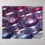 Pipeta y placas de Petri con los líquidos Impresiones