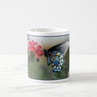 Pipevine Swallowtail en las flores Taza De Café