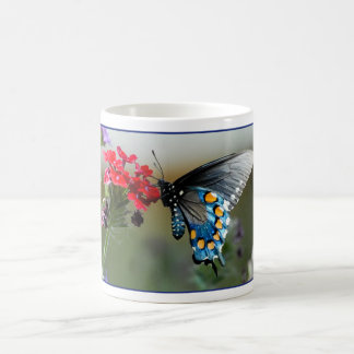 Pipevine Swallowtail on Flowers Classic White Coffee Mug