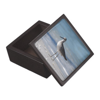 Piping Plover Box   Premium Keepsake Box