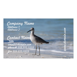 Piping Plover Business Cards