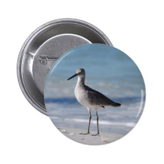 Piping Plover  Button