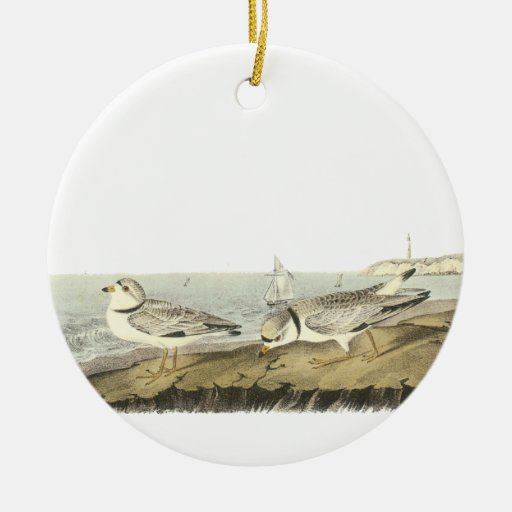 Piping Plover, John Audubon Christmas Ornament
