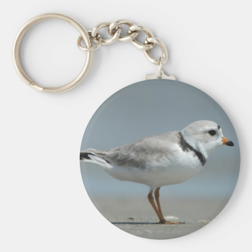 Piping Plover Keychain