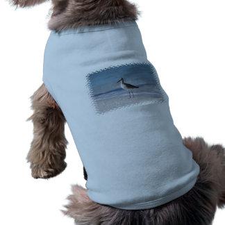 Piping Plover  Pet Shirt