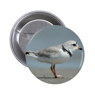 Piping Plover Pinback Button