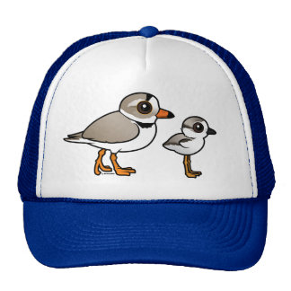 Piping Plover with chick Mesh Hat