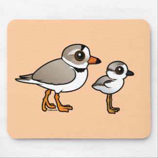 Piping Plover with chick Mouse Pad