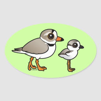 Piping Plover with chick Oval Sticker