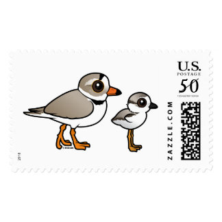 Piping Plover with chick Postage
