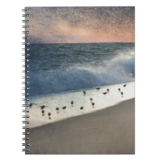 Piping Plovers and Peach and Blue Sunset Spiral Note Books