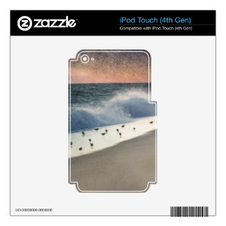 Piping Plovers and Peach and Blue Sunset Decals For iPod Touch 4G