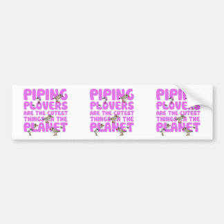 Piping Plovers are the Cutest Things on the Planet Bumper Sticker