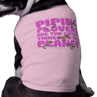 Piping Plovers are the Cutest Things on the Planet Pet Tee