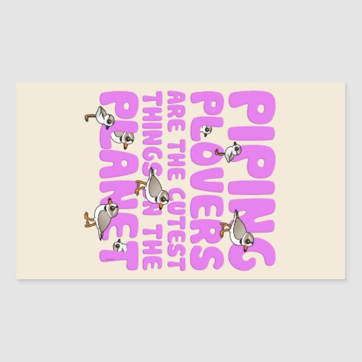 Piping Plovers are the Cutest Things on the Planet Rectangular Stickers