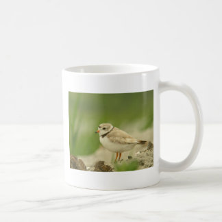Pipng Plover Coffee Mugs